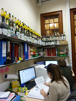 December 2013 - Working in the lab